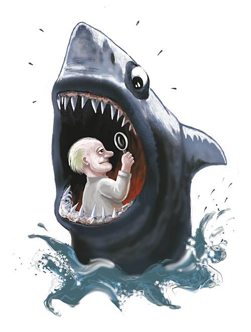 shark-141